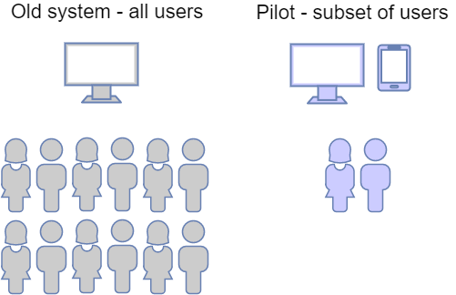 Pilot / Minimum Viable Product